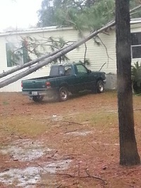 A tree that fell on a home due to gusty winds. Photo courtesy of WALB TV.