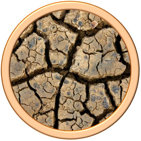 drought icon