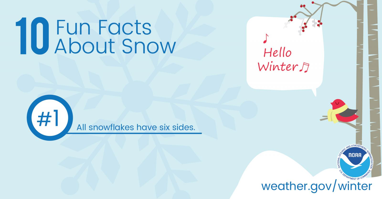 10 Fun Facts About Snow: #1. All snowflakes have six sides.