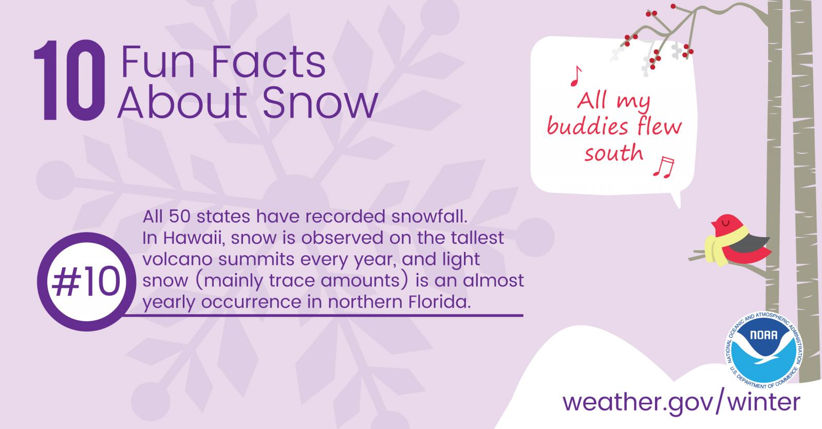 10 Fun Facts About Snow: #10. All 50 states have recorded snowfall. In Hawaii, snow is observed on the tallest volcano summits every year, and light snow (mainly trace amounts) is an almost yearly occurrence in northern Florida.