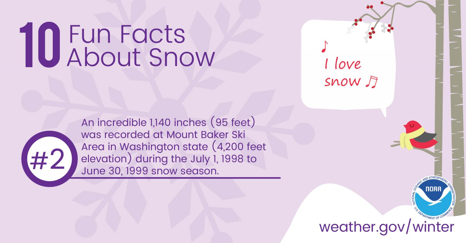 10 Fun Facts About Snow: #2. An incredible 1,140 inches (95 feet) was recorded at Mount Baker Ski Area in Washington State (4,200 feet elevation) during the July 1, 1998 to June 30, 1999 snow season.