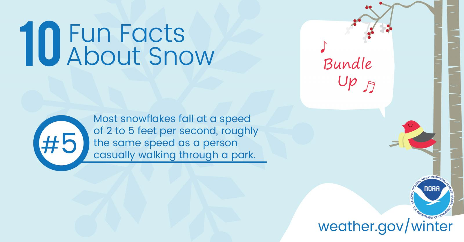 10 Fun Facts About Snow: #5. Most snowflakes fall at a speed of 2 to 5 feet per second, roughly the same speed as a person casually walking through a park.
