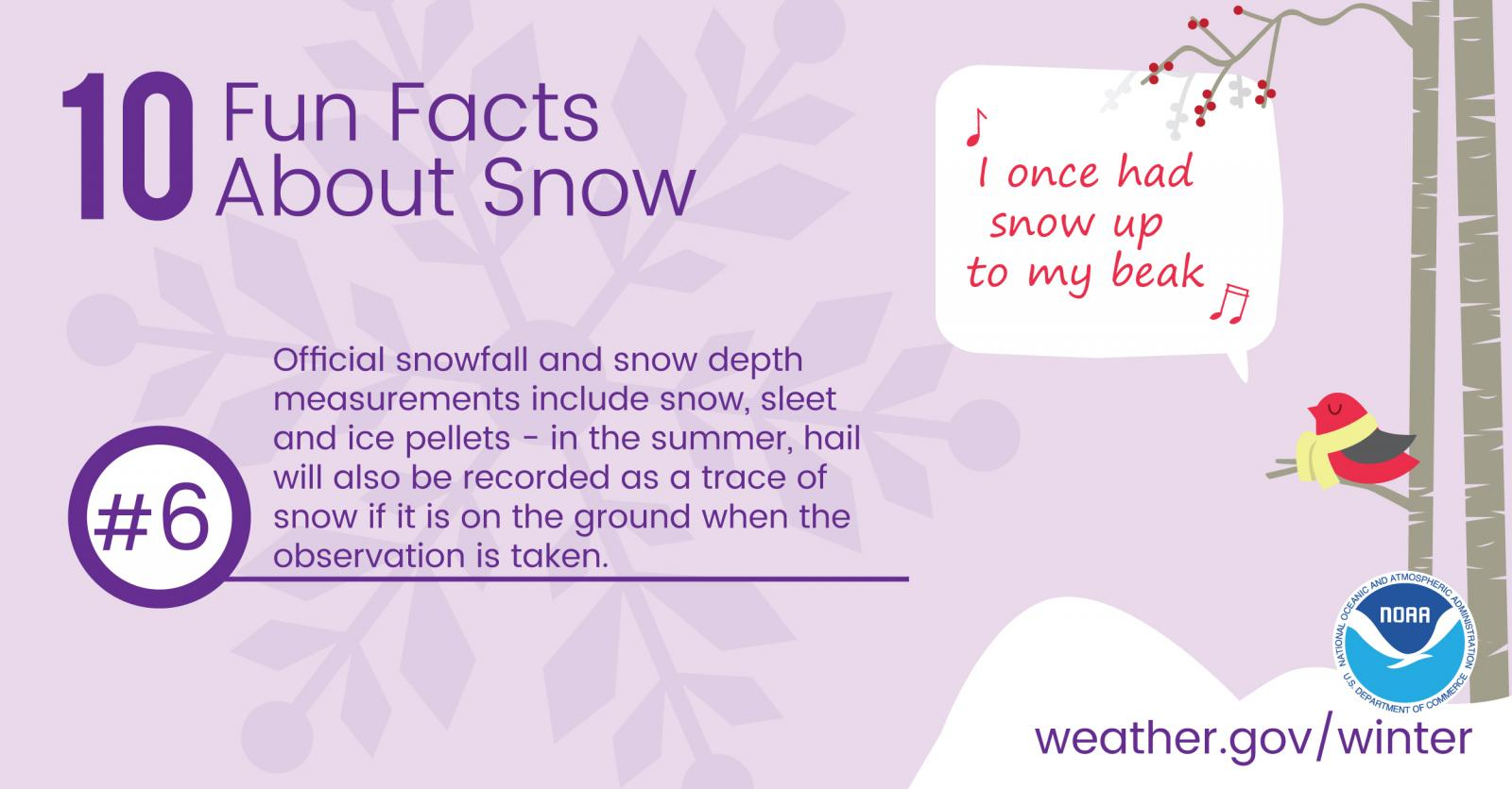 10 Fun Facts About Snow: #6. Official snowfall and snow depth measurements include snow, sleet and ice pellets - in the summer, hail will also be recorded as a trace of snow if it is on the ground when the observation is taken.