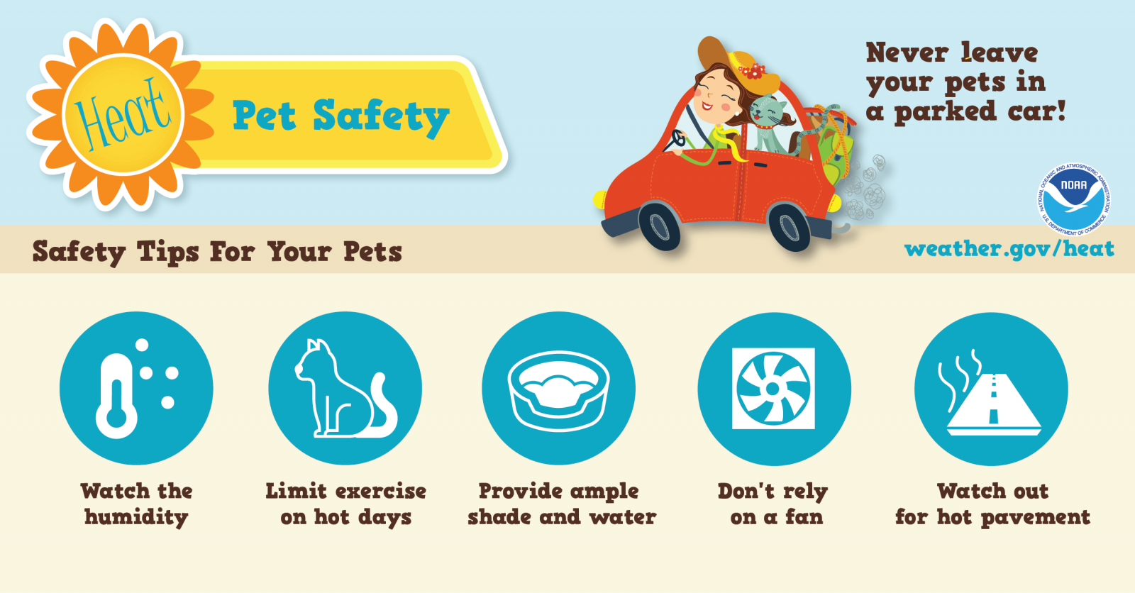 Keep Your Pets Cool During the Dog Days of Summer