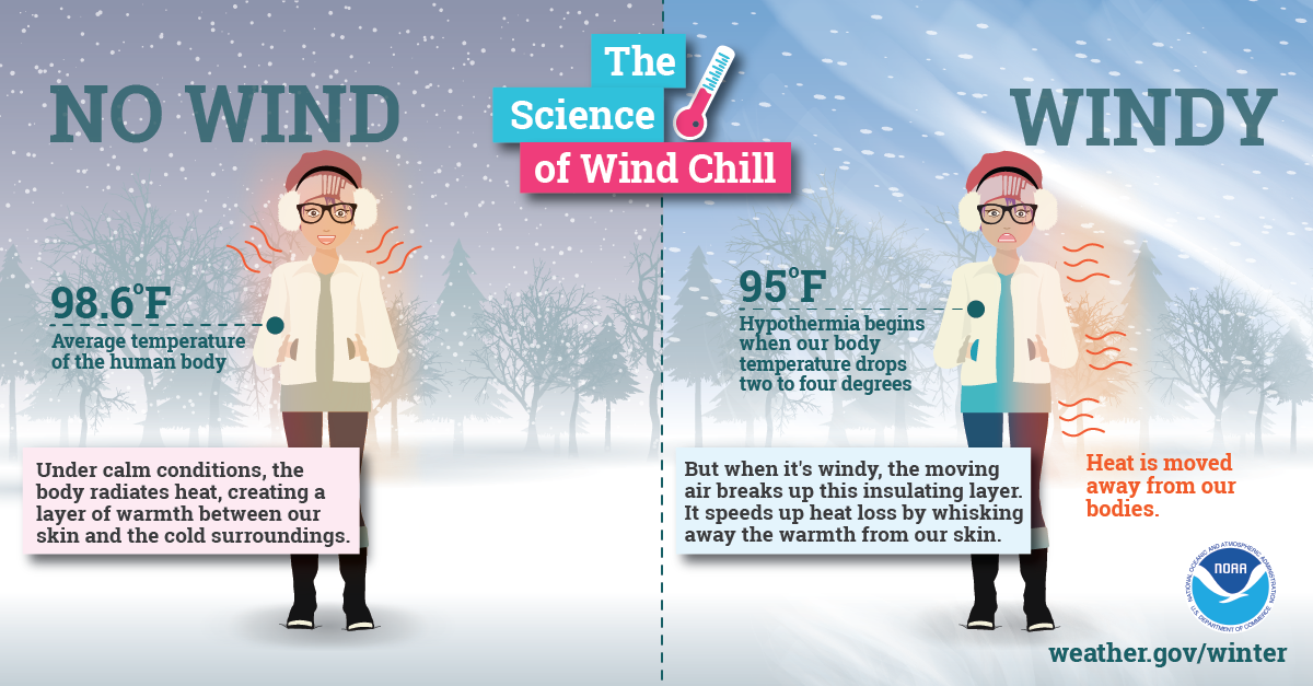 Science of Wind Chill