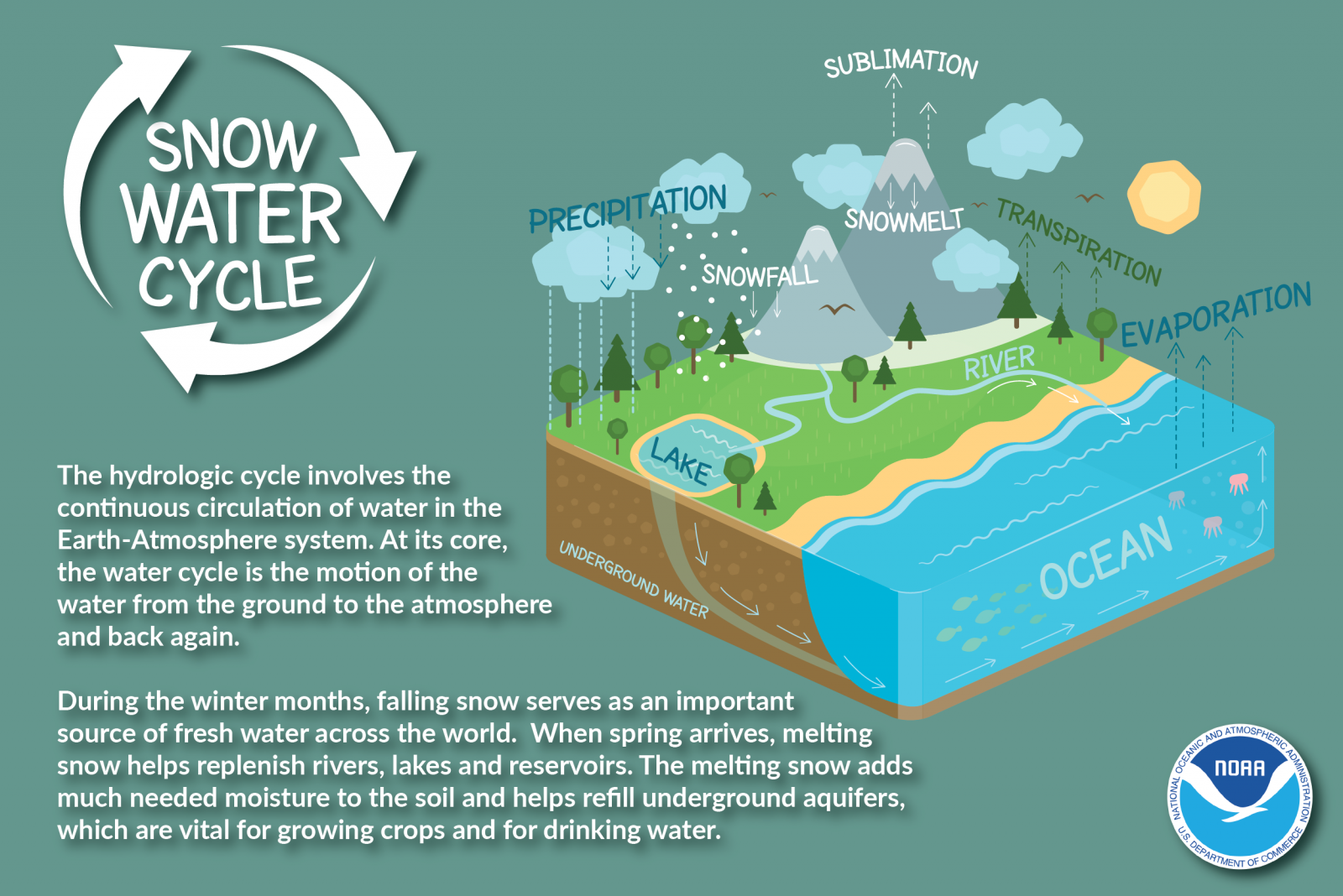 Snow Water Cycle