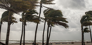 CDC: Preparing for Hurricanes During the COVID-19 Pandemic