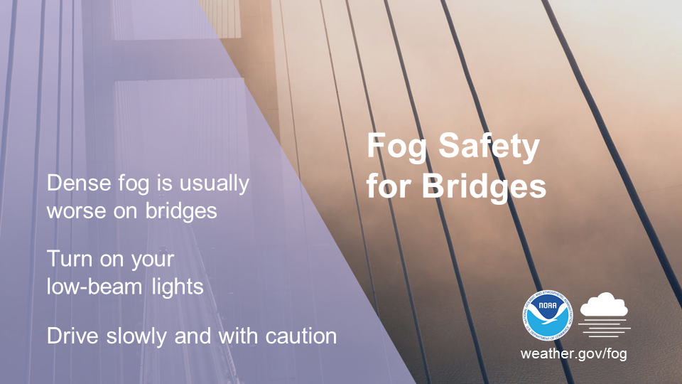 Fog safety for bridges: Dense fog is usually worse on bridges. Turn on your low-beam lights. Drive slowly and with caution.
