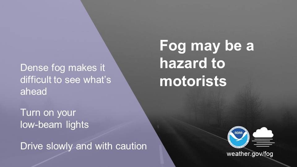 Fog may be a hazard to motorists. Dense fog makes it difficult to see what's ahead. Turn on your low-beam lights. Drive slowly and with caution.