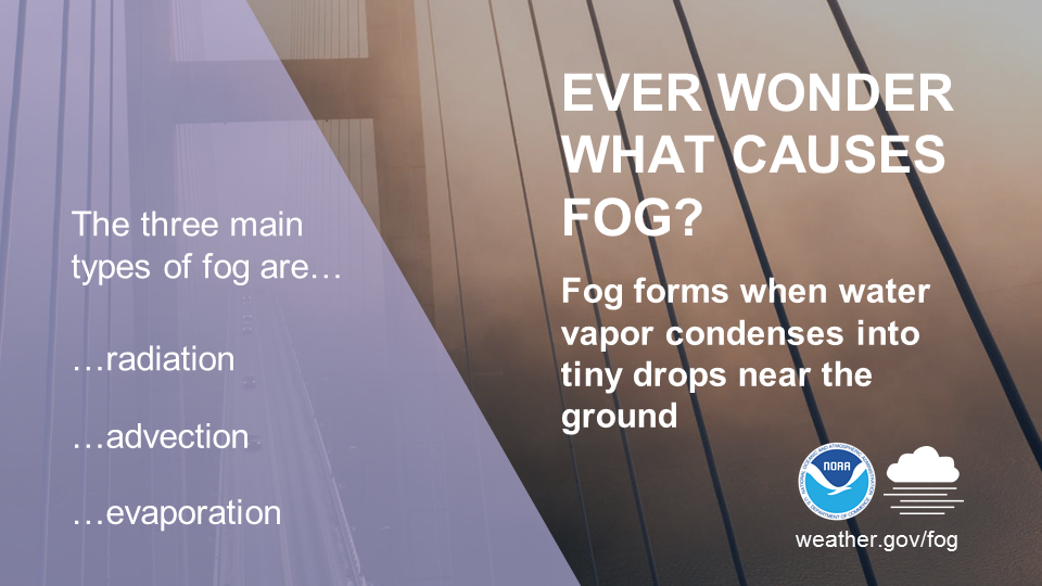 Ever wonder what causes fog? Fog forms when water vapor condenses into tiny drops near the ground. The three main types of fog are radiation, advection, and evaporation.