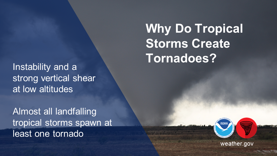 Why Do Tropical Storms Create Tornadoes? Instability and a strong vertical shear at low altitudes. Almost all U.S. tropical storms spawn at least one tornado.