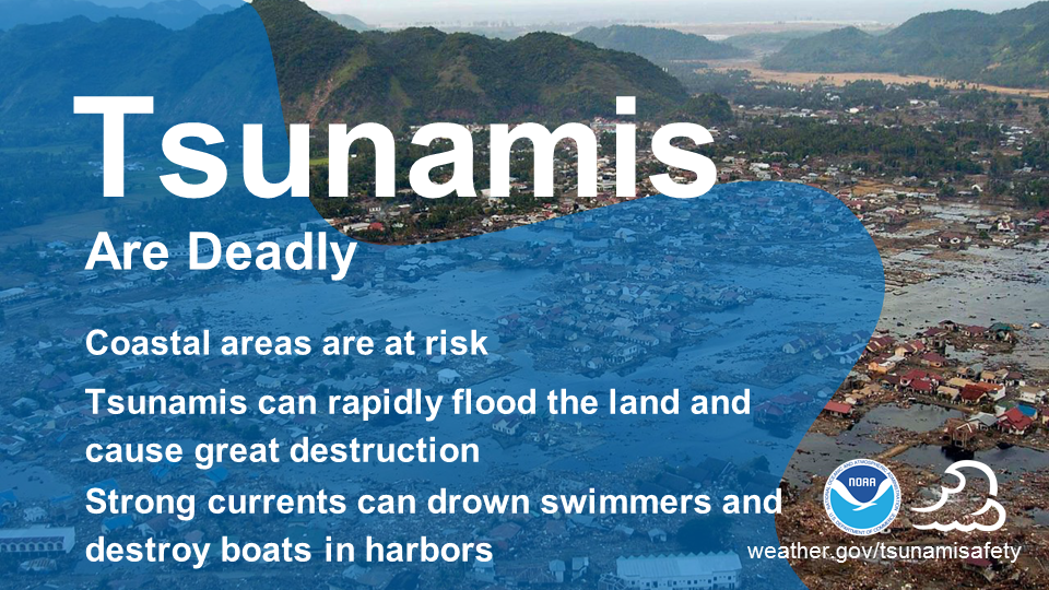 Tsunami are deadly. Coastal areas are at risk. Tsunamis can rapidly flood the land and cause great destruction. Strongs currents can drown swimmers and destroy boats in harbors.