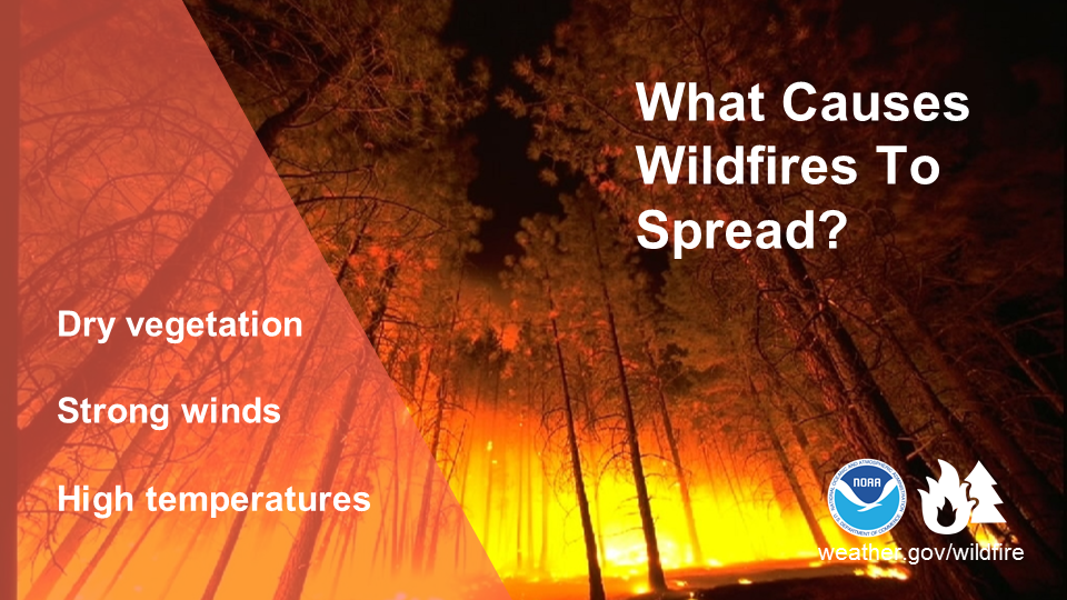 What Causes Wildfires to Spread? Dry vegetation. Strong winds. High temperatures.